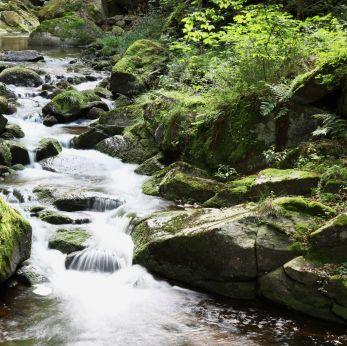 ilse river waterfall, harz