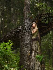 fairy in the woods