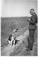 hitlers blondi in winniza, ukraine, 1942, fritz tornow