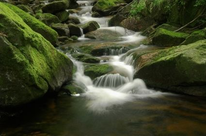 stream in the harz mountains