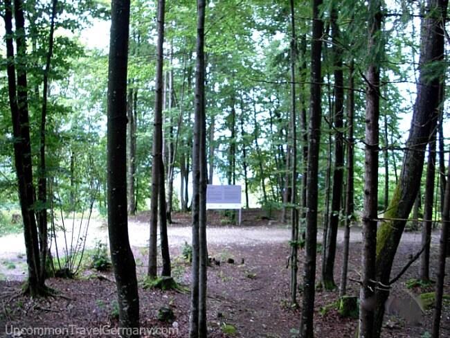 Woods near Berghof ruins with informational billboard