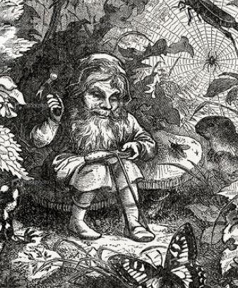 gnome cobbler